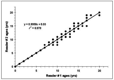 dating age difference equation graph gif 500x354